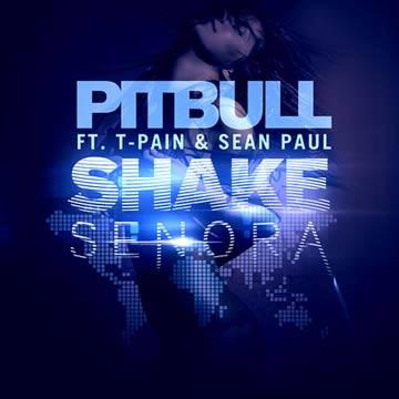 Shake Señora Remix